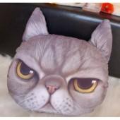 3D подушка кот злой